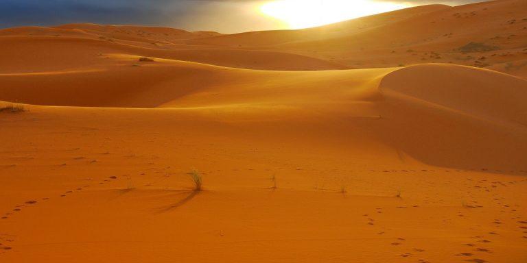 Morocco Sahara Holiday Tours Marrakech Fes 3 days