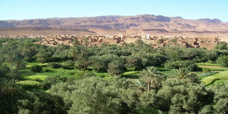 4 days Trip from Fes to Desert Sahara Oases