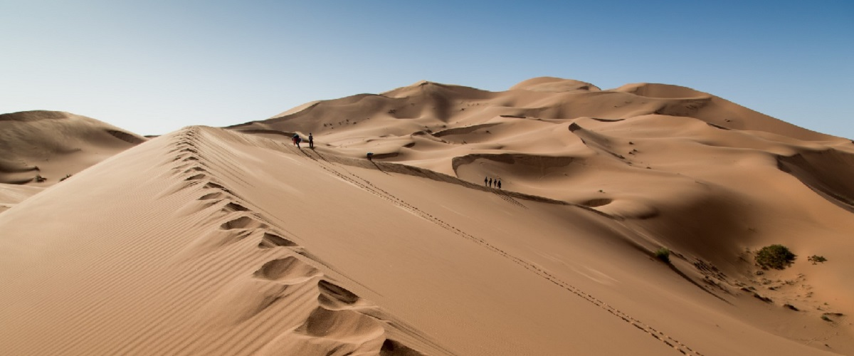 Morocco Camel Trekking Fes 3 Days